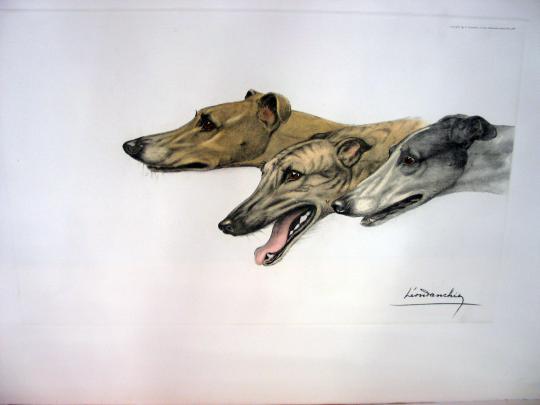гравюра с блошинного рынка- охотничьи собаки